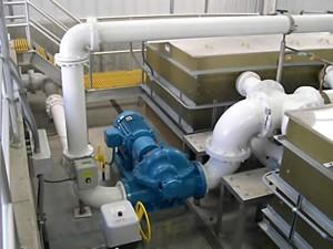 DE plant pump assembly